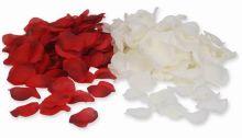 Rosen, Rosenblätter, Rosenblüten