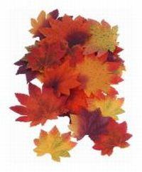 Herbst-Deko - herbstliche Dekoration - Herbstdekoration basteln